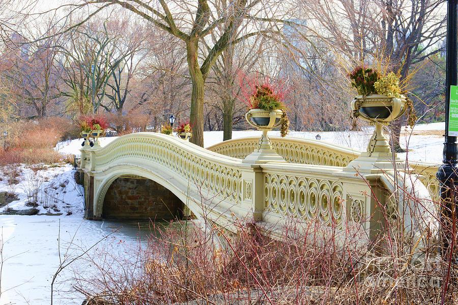 Paul Ward Photograph - Bow Bridge In Central Park Ny by Paul Ward