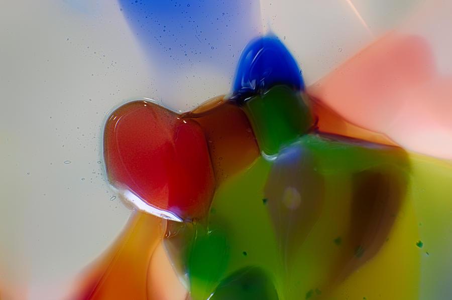 Glass Photograph - Bow Tied Kiwi by Omaste Witkowski