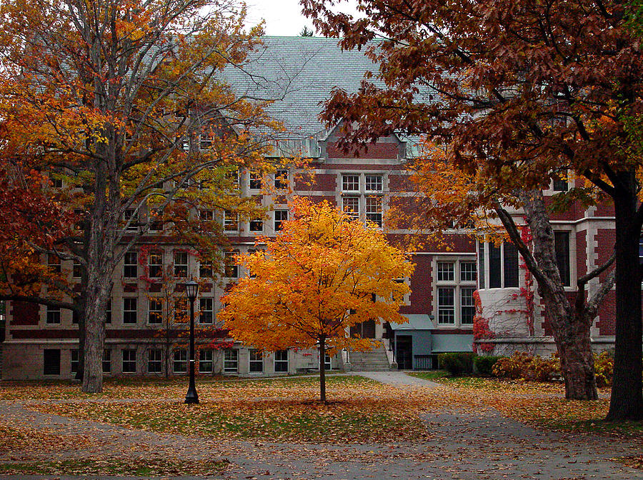 Bowdoin college campus in the fall photograph by david whiteside bowdoin college photograph bowdoin college campus in the fall by david whiteside sciox Image collections