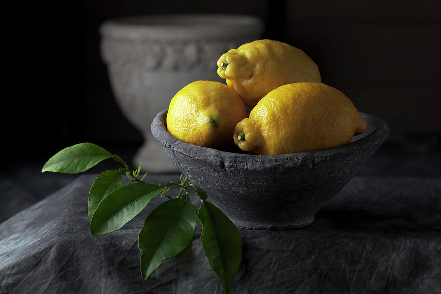 Bowl Of Lemons With Leaves, Close Up Photograph by Westend61