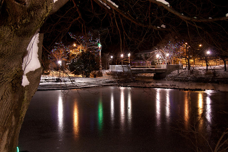 Christmas Photograph - Bowring Park by Darrell Young
