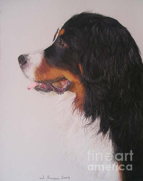 Pastel Pet Portrait Pastel - Bowser by Joanne Simpson