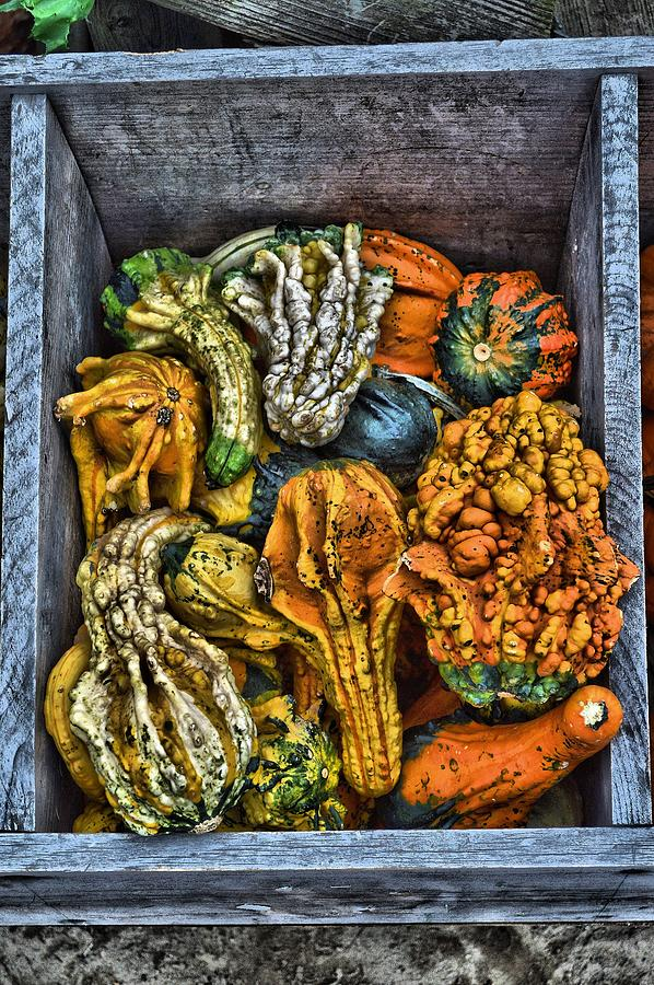 Hdr Photograph - Box Of Gourds by Thomas  MacPherson Jr