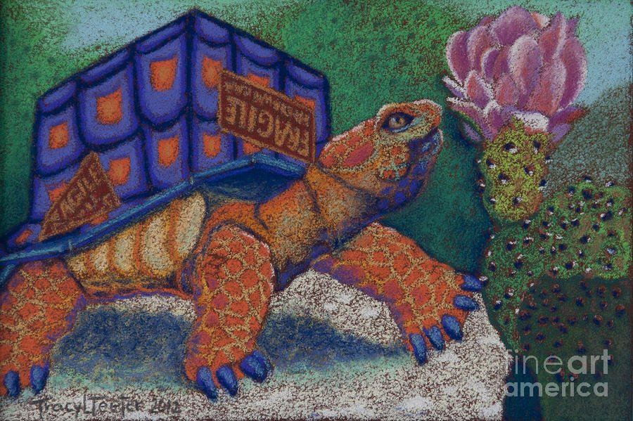 Cardboard Pastel - Box Turtle by Tracy L Teeter