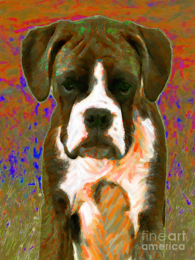 Animal Photograph - Boxer 20130126v1 by Wingsdomain Art and Photography
