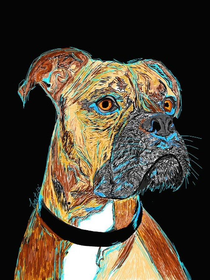 Boxer Painting - Boxer - Bud by Bert Hornbeck