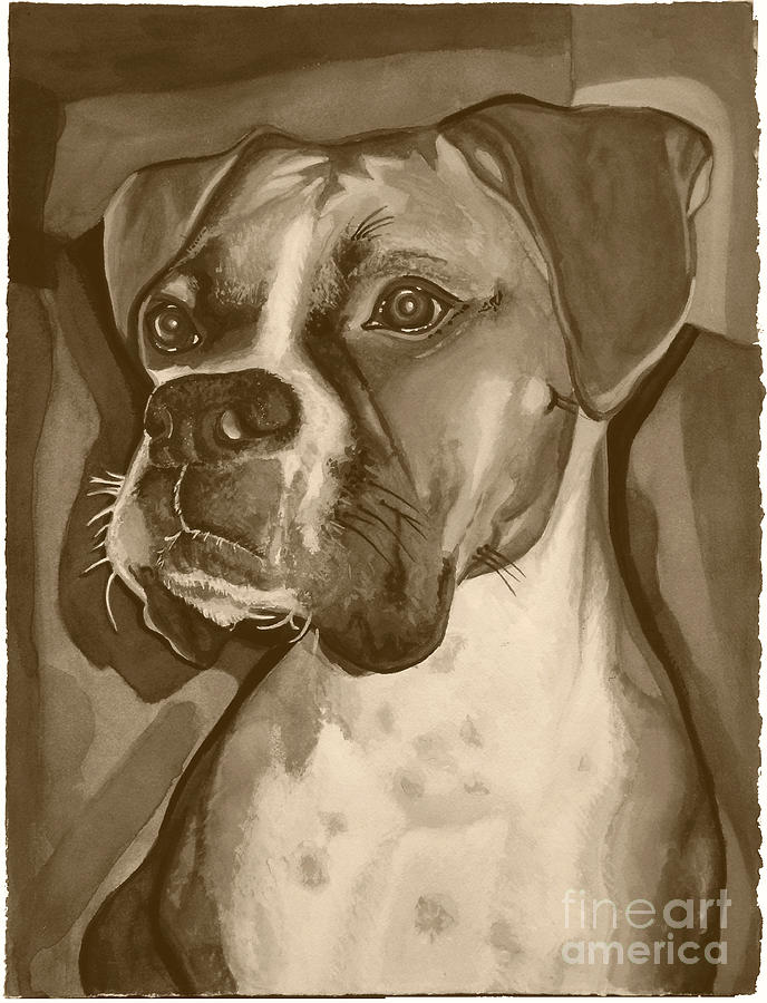 Boxer Painting - Boxer Dog Sepia Print by Robyn Saunders