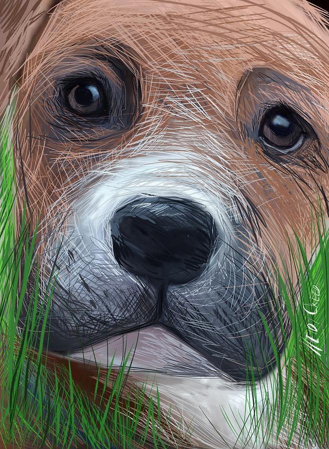 Dog Digital Art - Boxer by Heidi Creed