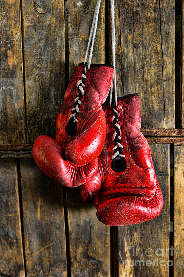 Paul Ward Photograph - Boxing Gloves - Now Retired by Paul Ward