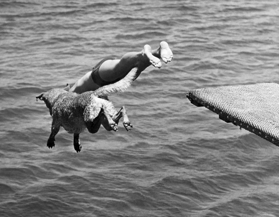 1940 Photograph - Boy And His Dog Dive Together by Underwood Archives