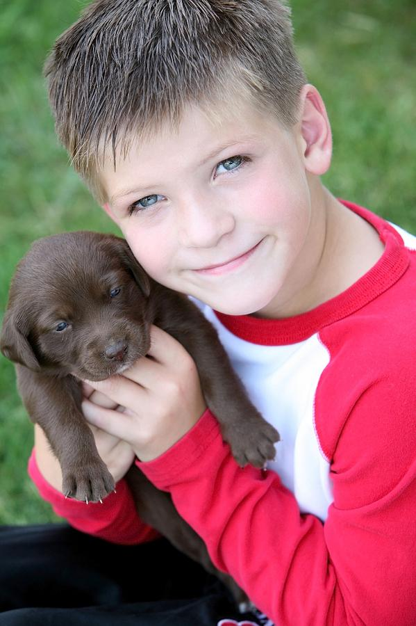 Animals Photograph - Boy Holding Puppy by Colleen Cahill