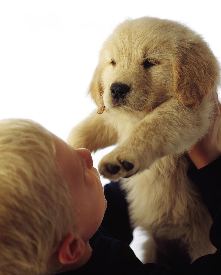 Children Photograph - Boy Holding Puppy Up by Ron Nickel