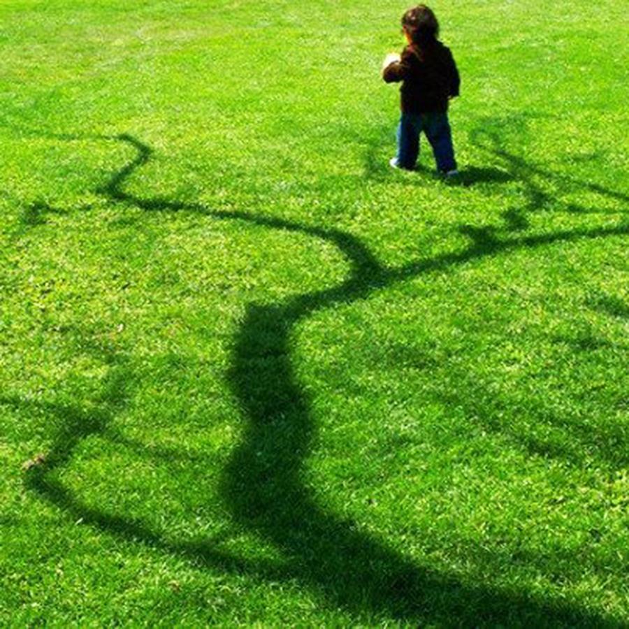 BOY IN A TREE 2 by Pamela Smale Williams