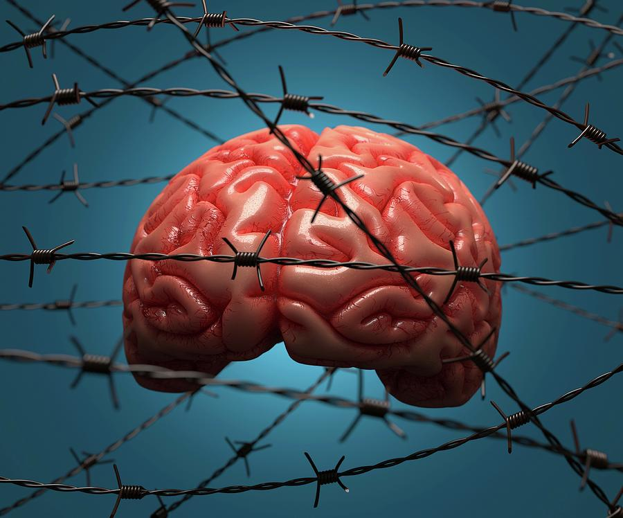 Artwork Photograph - Brain And Barbed Wire by Ktsdesign