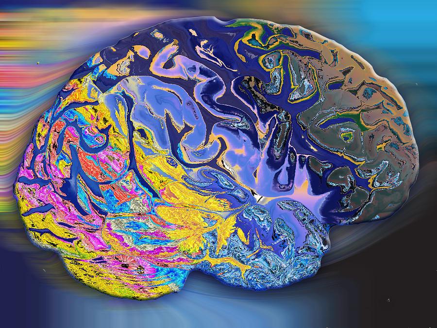 Brain Digital Art - Brain Colours by Soumya Bouchachi