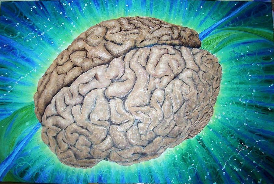 даст проверка мозга с картинками математик, преподаватель мгу