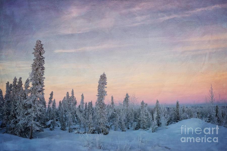 Dempster Highway Photograph - Break Of Dawn by Priska Wettstein
