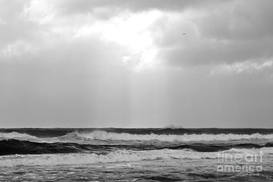 Breakthrough Photograph - Breakthrough by Michelle Wiarda