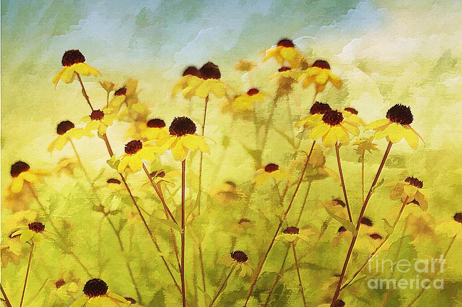 Flowers Photograph - Breeze by Elaine Manley