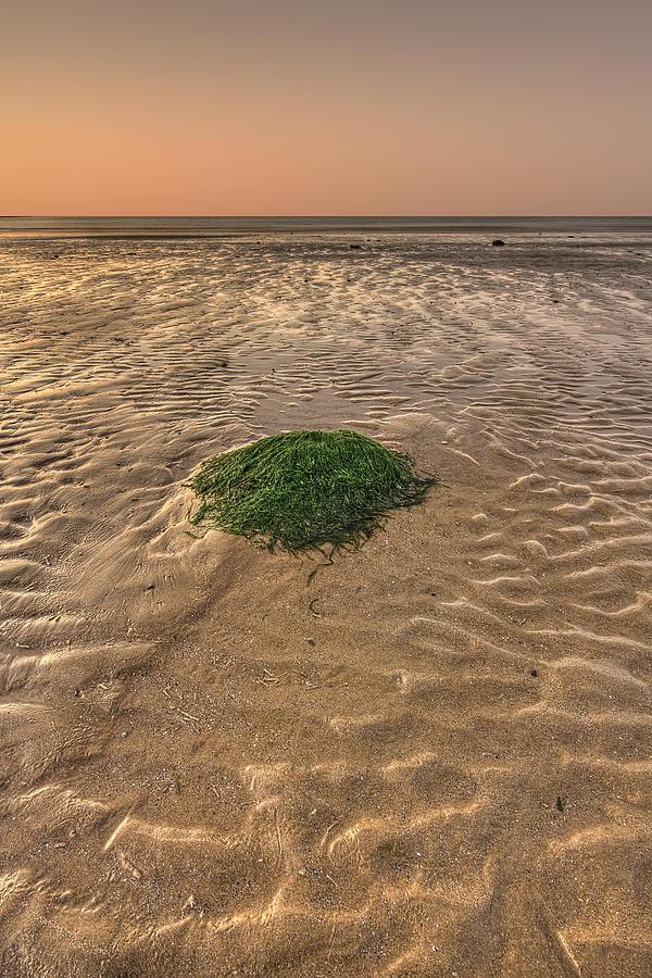 Filey Photograph - Breeze Of Dawn by Evelina Kremsdorf