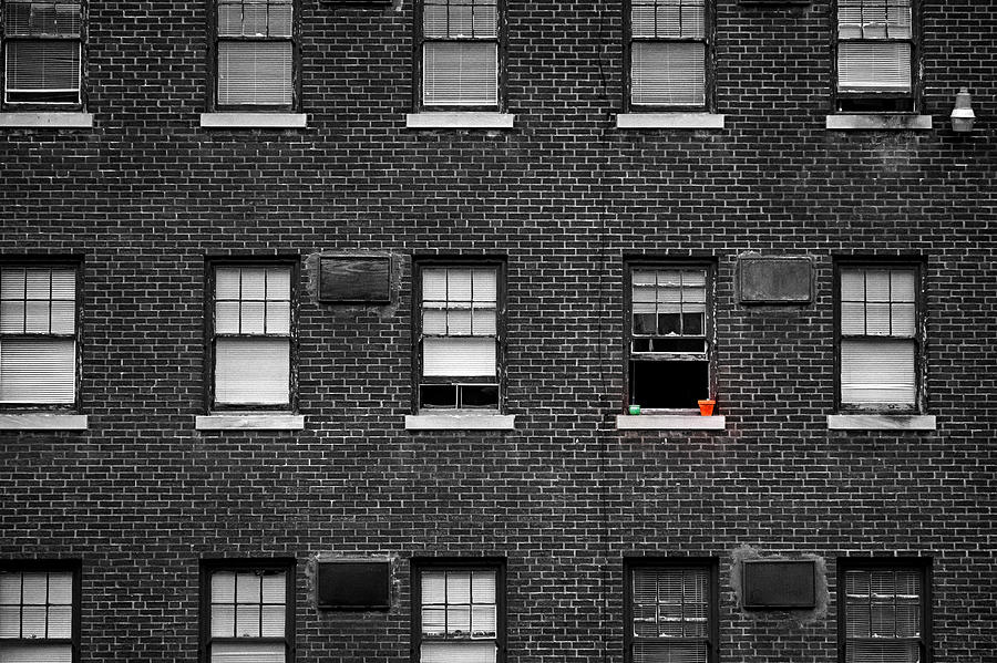 Brick Wall and Windows by Jim Shackett