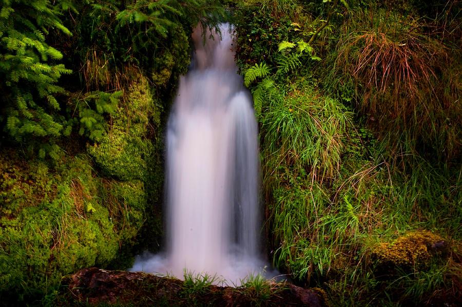 Scotland Photograph - Bridal Dress. Waterfall At Benmore Botanical Garden. Nature Of Scotland by Jenny Rainbow