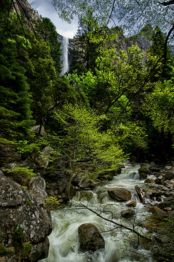 Water Photograph - Bridalveil Falls And Runoff by Cat Connor