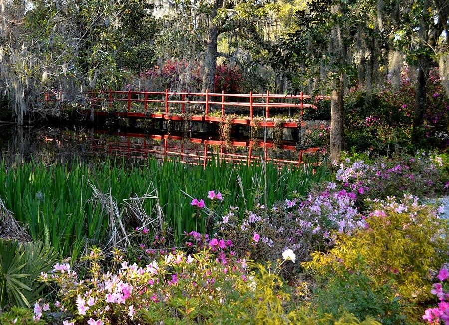 Red Photograph - Bridge And Floral by Jeff  Bjune
