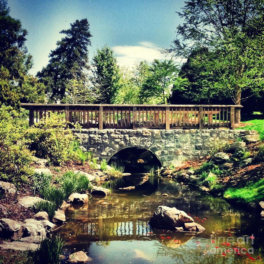 Blacksburg Photograph   Bridge At Hahn Horticulture Garden By Kerri Farley