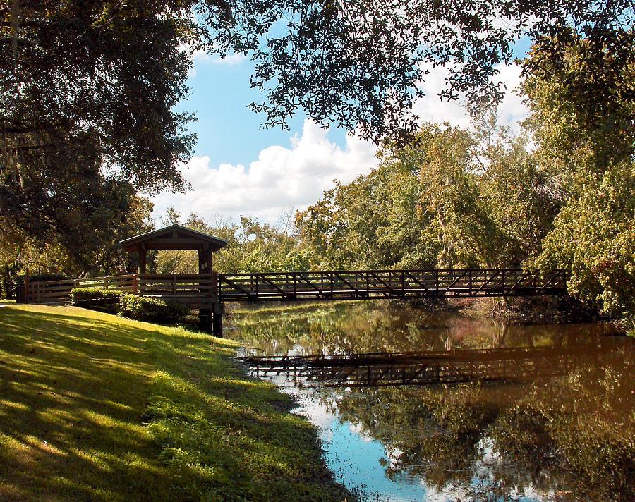 Sawgrass Photograph - Bridge At Sawgrass Park by Ginny Schmidt