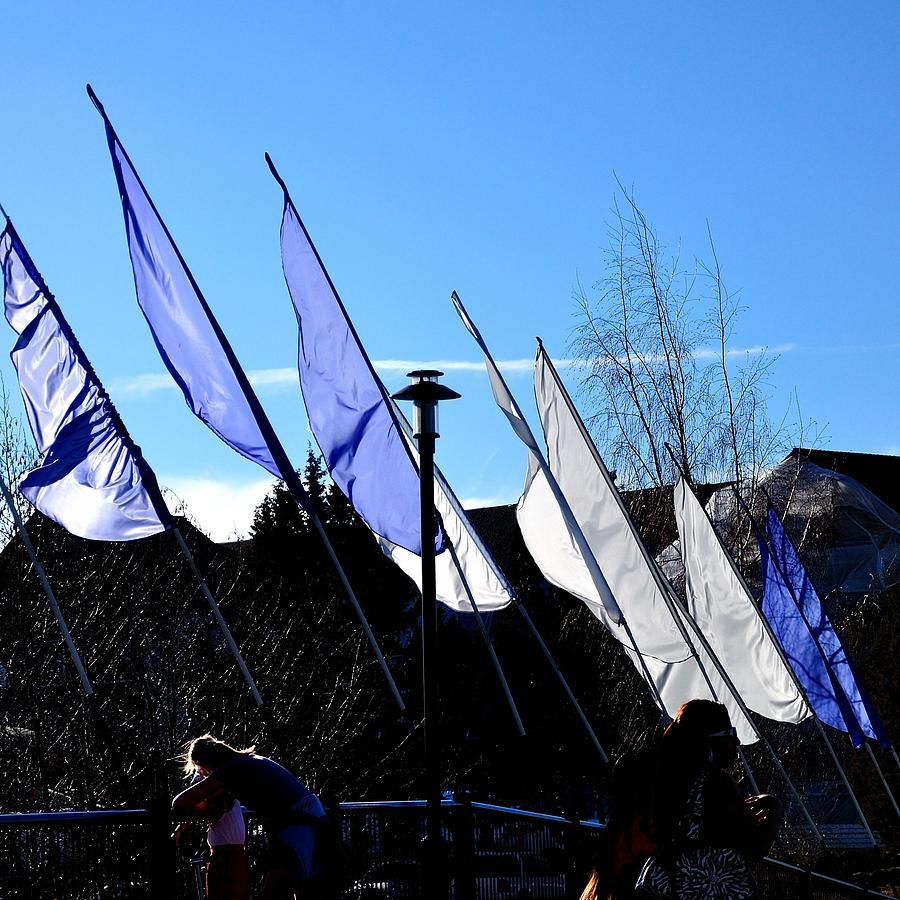Bridge Flags 21749 Photograph