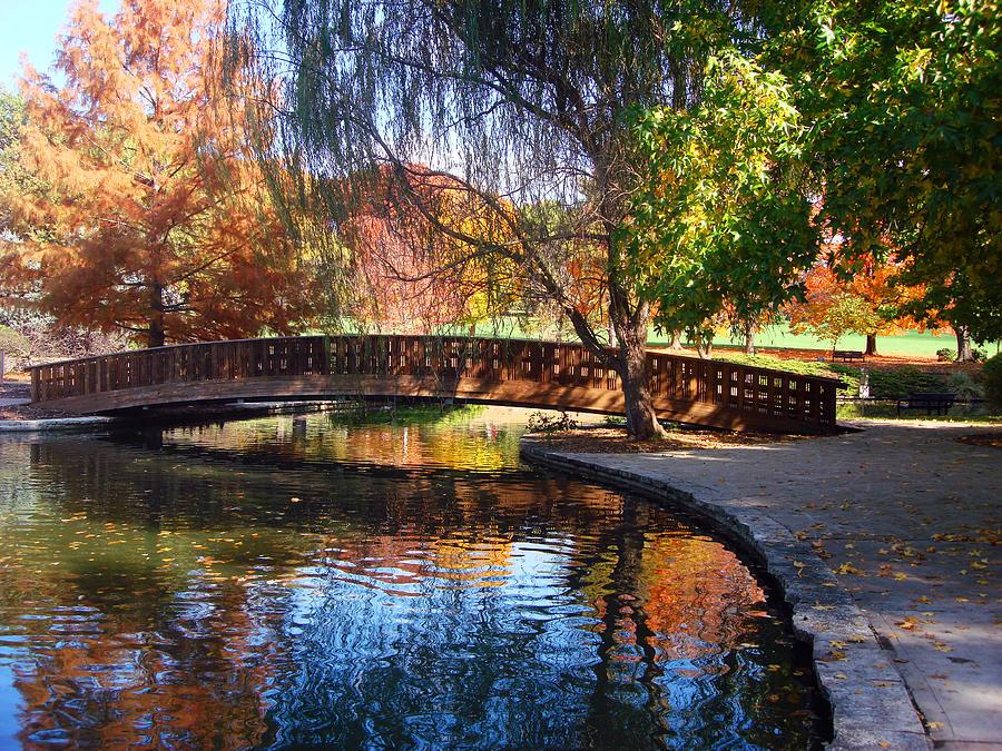 Trees Photograph - Bridge In Autumn by Ellen Tully