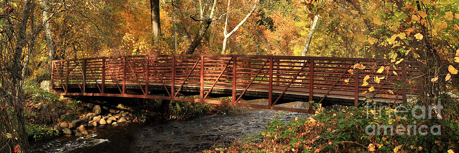 Bridge Photograph - Bridge On Big Chico Creek by James Eddy