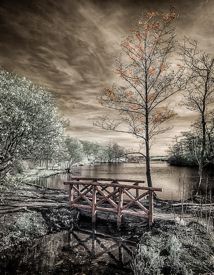 Bridge Over Calm Waters by Steve Zimic
