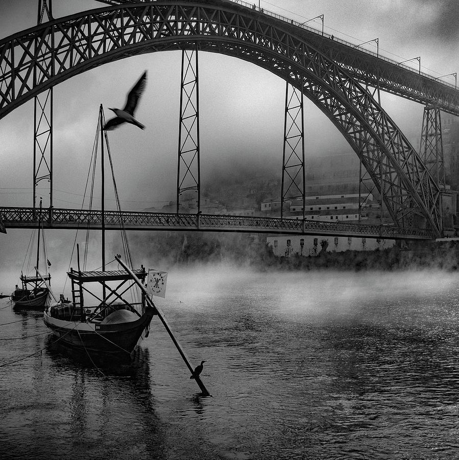 Bridge Photograph - Bridge Over Douro by Fernando Jorge Gon?alves