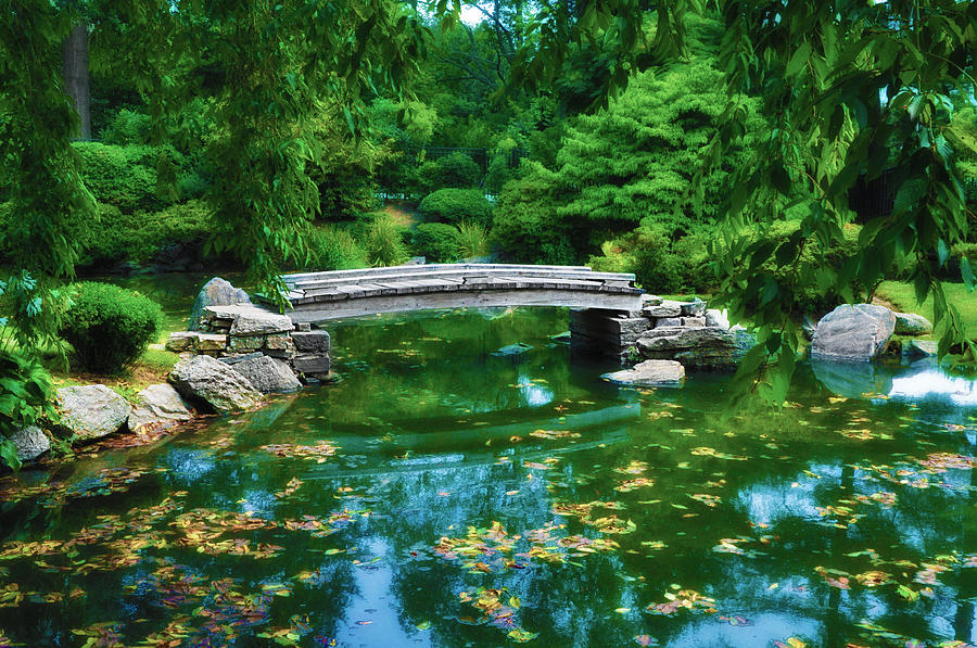 Bridge Over Koi Pond Photograph By Bill Cannon