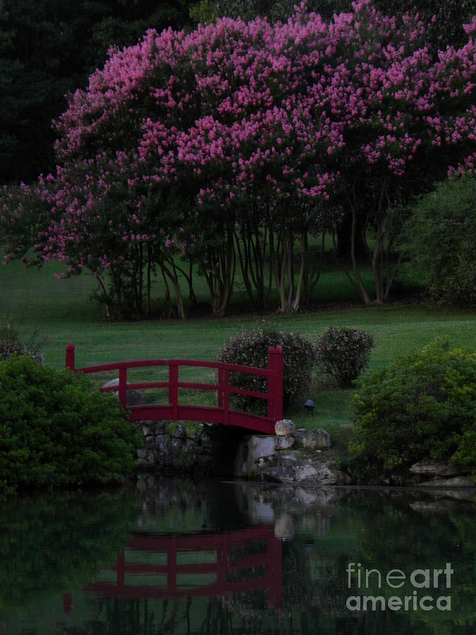Red Bridge Photograph - Bridge Over Peaceful Waters by Amy Stuart Langlo