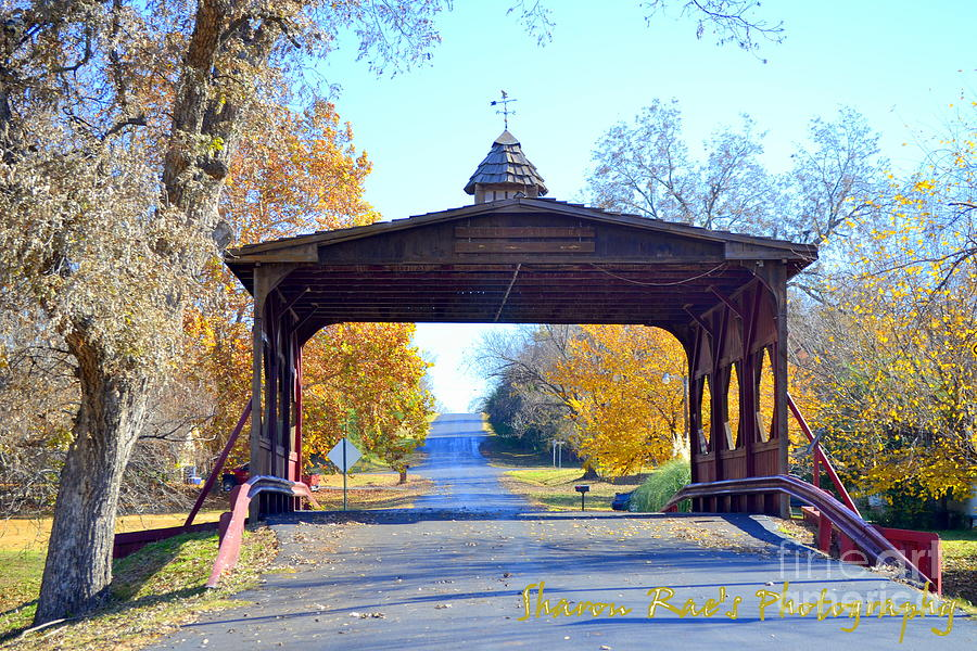 Bridge Photograph - Bridge by Sharon Farris