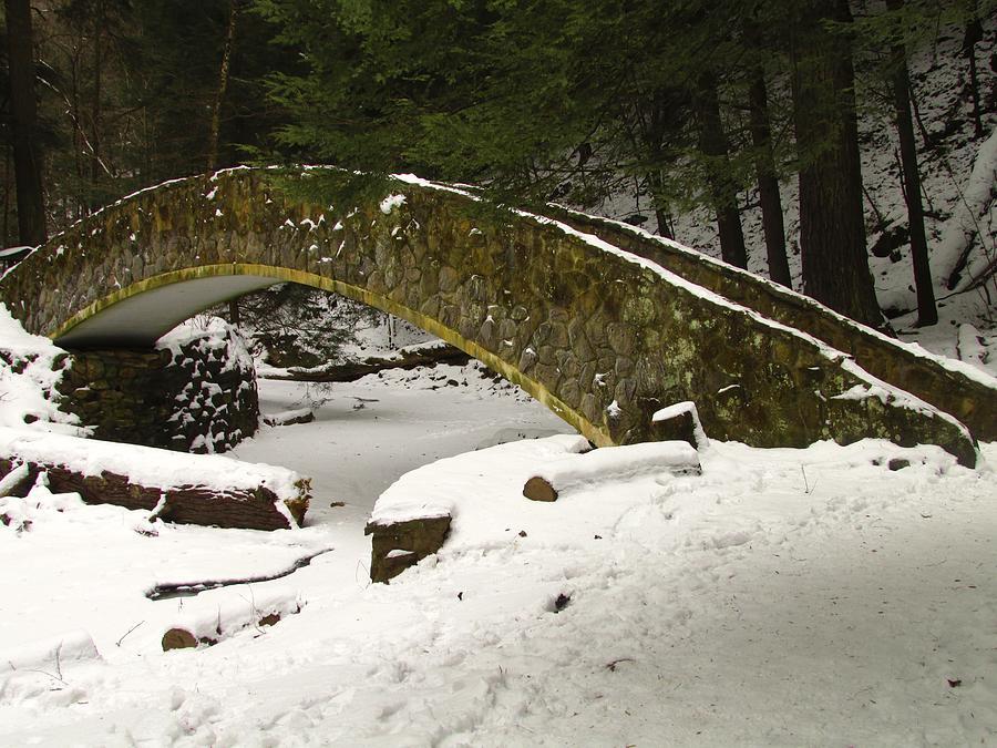 Bridge Photograph - Bridge To Wonderland by Andrea Dale