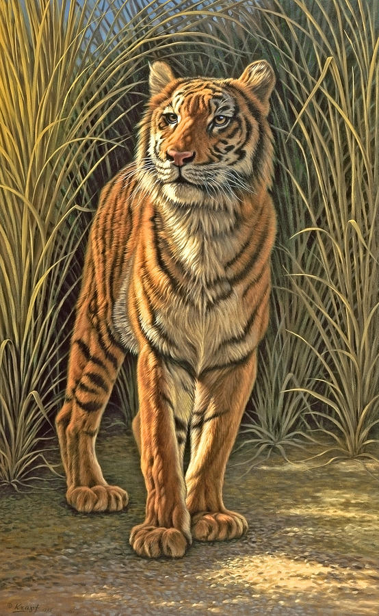 Wildlife Painting - Brief Appearance by Paul Krapf
