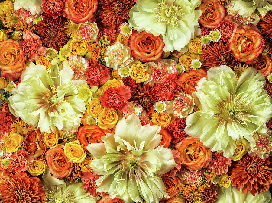 Bright Flower Arrangement, Full Frame Photograph by Jonathan Knowles