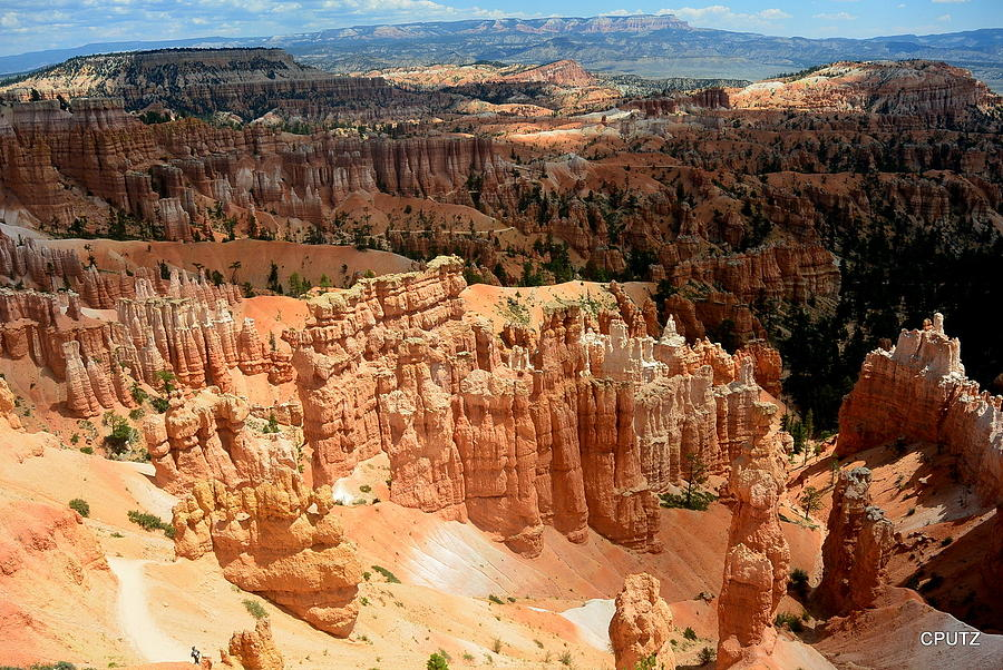 Bryce Canyon National Park Photograph - Brilliant Bryce by Carrie Putz