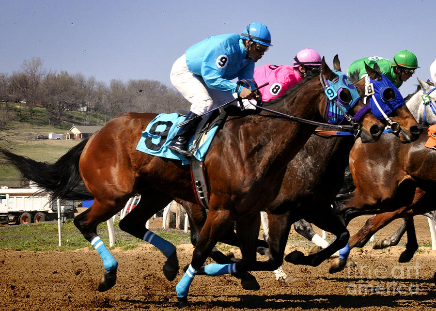 Horse Photograph - Bringing On The Blue by Nava Thompson