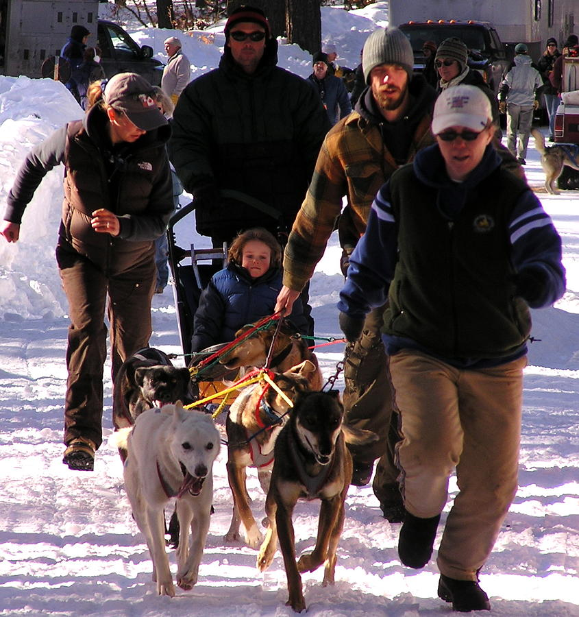 Sled Dogs Photograph - Bringing The Sled Up To The Line by Feva  Fotos