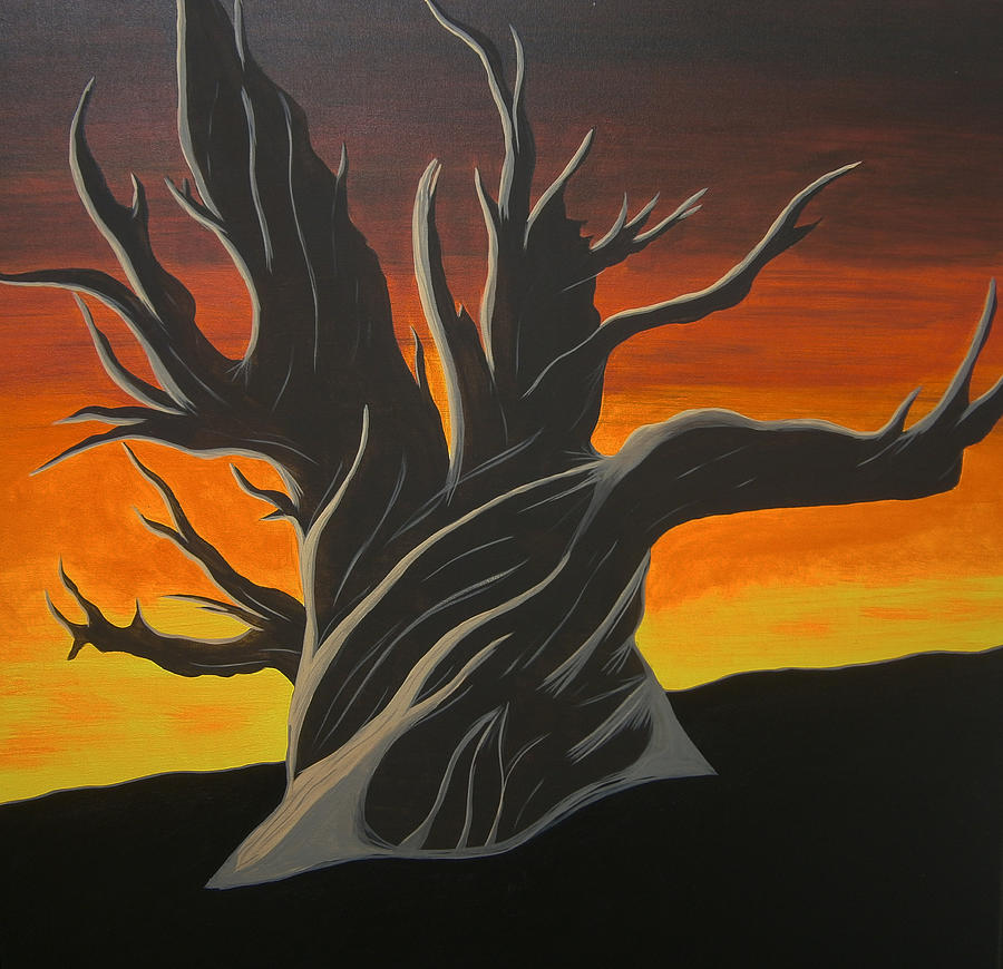 Bristle Cone Pine Painting - Bristle Cone Pine At Dusk by Drew Shourd