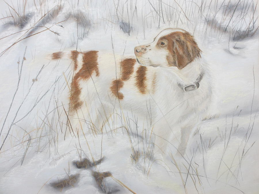 Dog Painting - Brittany Spaniel by Sherri Anderson