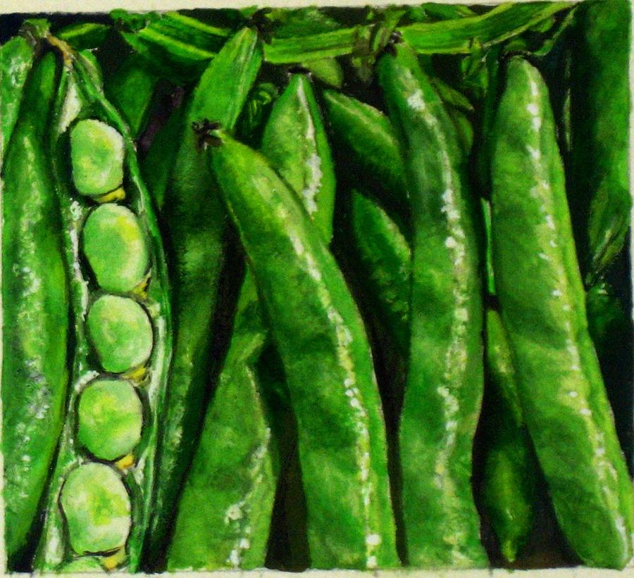 Bean Painting - Broad Beans by Arual Jay