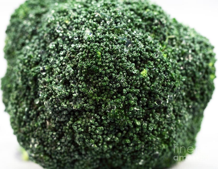 Broccoli Photograph - Broccoli by John Rizzuto