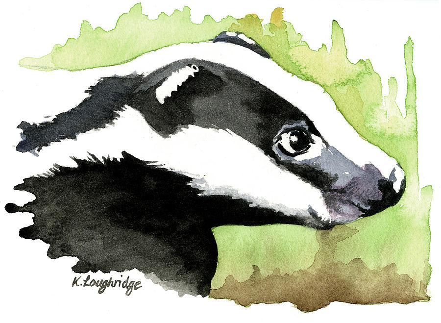 Brock Badger by Karen  Loughridge KLArt