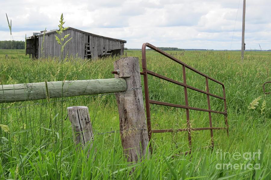 Prairie Photograph - Broken Down by Mary Mikawoz